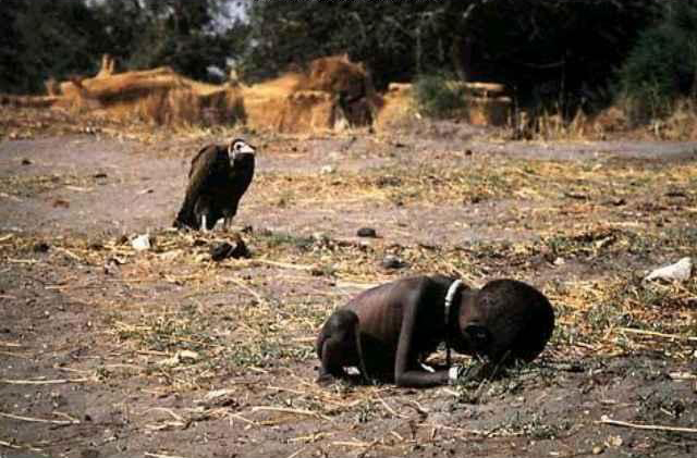 A vulture overlooks an emaciated Sudanese girl in 1993. Photo copyright Kevin Carter and the New York Times